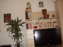 Foto 2 1 1/2 Zimmerwohnung