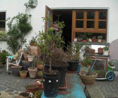1-2 Fam. Haus, am Bach m. Wald auf 5000qm, N�he Mosel