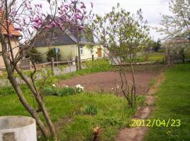 Foto 5 1-Familienhaus mit großen Garten in 99765 Auleben bei Nordhausen