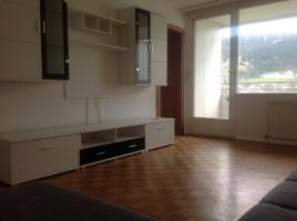 1-Zi-Appartement 45m2 in 6911 LOCHAU am See