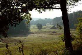 Foto 4 1 ha Grundstück in Polen zu verpachten