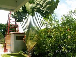 Foto 3 10 Zimmer Villa  in Alcantara/Philippinen