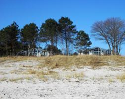 Foto 5 10 strandnahe Ferienwohnungen Insel Rügen, WLAN, Fahrräder, Terrasse u. Garten.