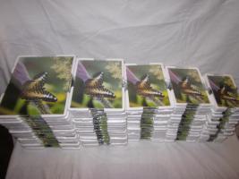 100 Stück - Rahmenlose Bilderrahmen - Neu & Verschweißt