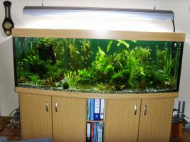 1000l Aquarium