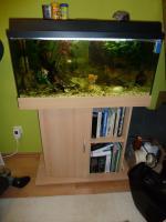 110l-Aquarium, Schrank, Fische, Pflanzen, Zubehör