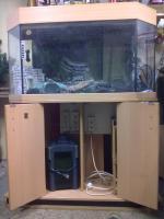 Foto 2 180l Panorama Aquarium