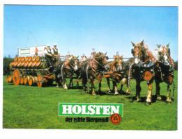 Holsteiner auf dem Weg zum Kunden