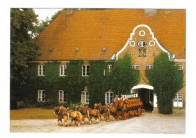 Holsten Gruß Lammershagen