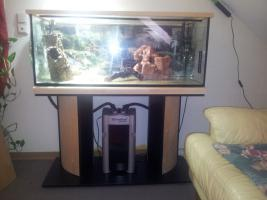 Foto 2 2 Aquarien, Unterschrank, JBL Filter, UV Lampe, Hei�stab&viel Zubeh�r!!!