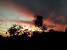 2 EFH in Paraguay-2800 qm Grundstück-sehr guter Zustand