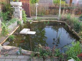 2 Gartenteiche, Goldfische, Filteranlagen inkl. UVC-Licht, Saugpumpen