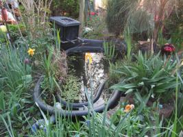 Foto 2 2 Gartenteiche, Goldfische, Filteranlagen inkl. UVC-Licht, Saugpumpen