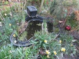 Foto 3 2 Gartenteiche, Goldfische, Filteranlagen inkl. UVC-Licht, Saugpumpen