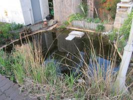 Foto 5 2 Gartenteiche, Goldfische, Filteranlagen inkl. UVC-Licht, Saugpumpen