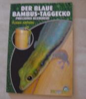Foto 2 2 Geckos (Blauer Bambus Taggecko) mit Terrarium