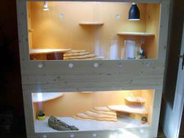 2 Holzterrarien + 2 B�cke *ansehen lohnt*