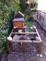 Foto 4 2 Kaninchen zu verschenken incl. Haus u. Gehege