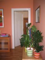 Foto 8 2 Raum Wohnung in idyllisch gelegener Villa in Kreischa