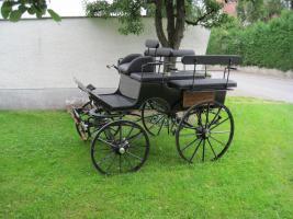2-Sp. Break Wagonette, Drehkranzbremse Haflinger/Cob Top Kutsche