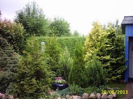 Foto 8 2-Zimmer Eigentumswohnung