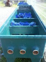 Foto 2 2 x Teichfilter für je 200000 l, Gfk, incl. Zubehör