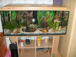240L Aquarium komplett mit Unterschrank