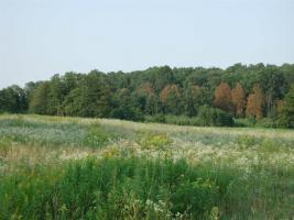 Foto 3 28 ha Bauland mit 3 Seen