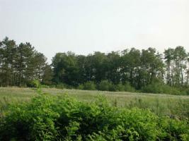 Foto 4 28 ha Bauland mit 3 Seen
