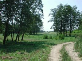 Foto 5 28 ha Bauland mit 3 Seen