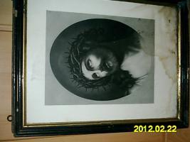 Foto 2 3 Bilder zu verschenken