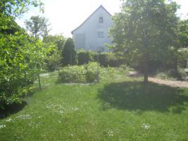 Foto 3 3 Familien Haus in Hechingen Unterstadt