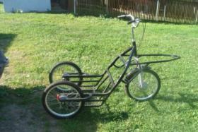 3-Rad-Trainingswagen zu verkaufen