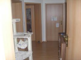 3 Raumwohnung in Möckern 500,00 € Warm