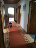 Foto 9 3 Zimmer DG-Wohnung, mit EBK, neu renoviert, neues Bad in ruhigem 3-Familien-Haus