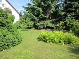 Foto 7 3 Zimmer Whg hell+freundlich EBK Klimaanlage Bad Sauna Garten ohne Provision