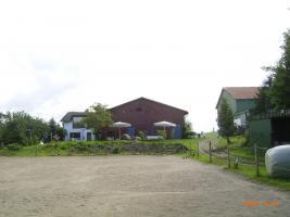 Foto 2 3 Zimmerwohnung(Blick ü. Holsteinische Schweiz) u. Pferdebox frei