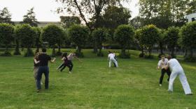 Foto 3 3 kostenlose Capoeira Schnupperstunden