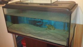 Foto 2 300 l Aquarium mit Unterschrank + Zubehör