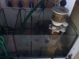 Foto 3 !!!! 360 Liter Aquarium (100x60x60) mit Technibecken und Unterschrank!!!!
