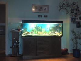 Foto 3 400 l kompletaquarium mit unterschrank und fischbesatz und viel zubeh�r