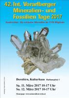 Foto 2 42. Int.Vorarlberger Mineralien-und Fossilien Tage 2017 in Dornbirn