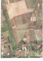 Foto 5 430 Hektar Ackerland in Westrumänien zu Verkaufen,