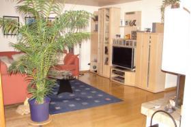 Foto 3 4.5 Zimmerwohnung mit Gartensitzplatz