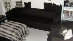 4er Couch + Couchsessel fast neu