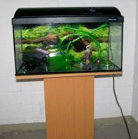 54 l aquarium mit abdeckung inkl beleuchtung unterschrank viel zubeh r zu verkaufen in. Black Bedroom Furniture Sets. Home Design Ideas