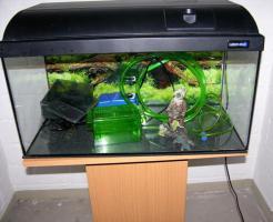Foto 2 54 l Aquarium mit Abdeckung inkl. Beleuchtung + Unterschrank + viel Zubehör zu verkaufen!!!