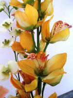 Foto 4 6 edele, naturgetreue Seidenblumen