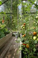 7 Hektar Pachtland mit Haus in Ungarn zu verkaufen