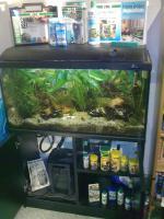 80l Aquarium mit Zubehör und Unterschrank